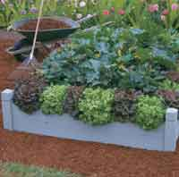 Building a Raised Bed pdf