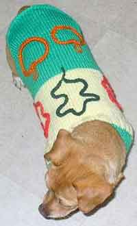Halloween Dog Sweater