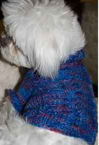 Over 100 Free Pet Knitting Patterns At Allcraftsnet