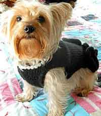 Little Black Dress - Dog Sweater