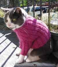 Long Sleeve Turtleneck Cat Sweater