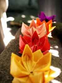 How to make an origami Lotus Flower. - YouTube | 267x200