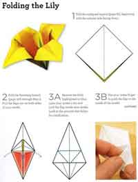 Over 75 free paper flower instructions at allcrafts how to fold an origami lily mightylinksfo