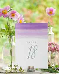 Color Wash Table Numbers